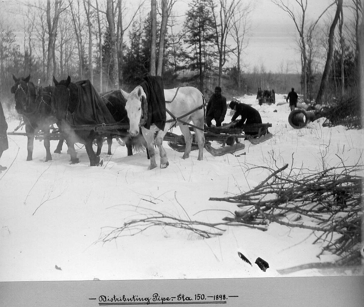 Horses pulling sleds with pipe and men