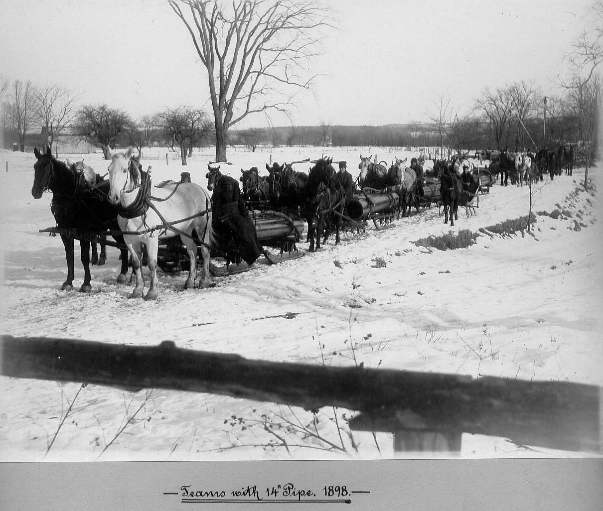 Horses pulling sleds carrying pipes
